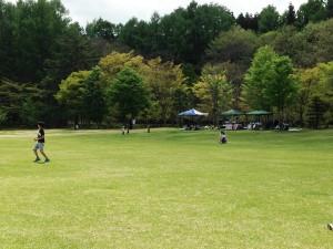 芝生エリア2