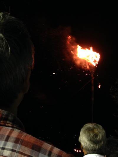 蜂の巣着火